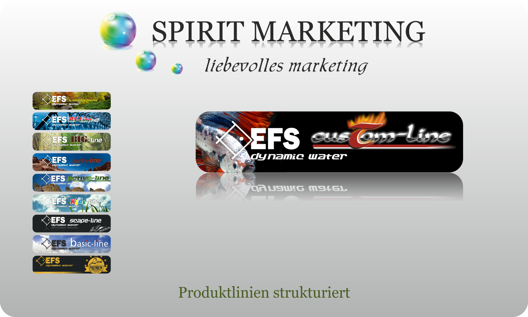 SPIRIT MARKETING - Produktlinien strukturiert
